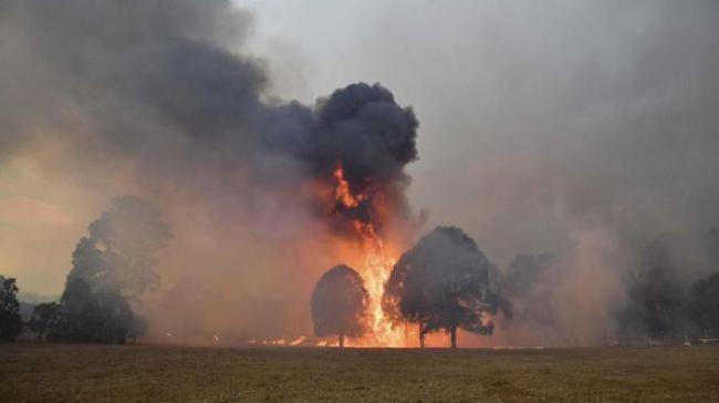 Kebakaran Hutan Australia Picu Badai Api