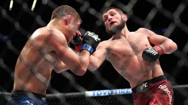 Khabib Dapat Rp105,7 Miliar dalam Dua Pertarungan di UFC