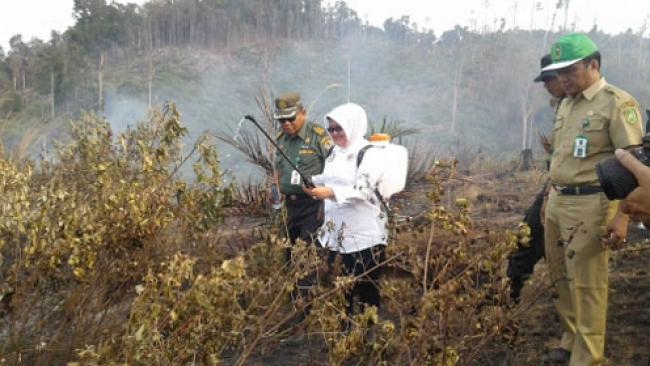 Yulwiriati Moesa Geram Kawasan Hutan Lindung Bukit Betabuh. Disulap Jadi Perkebunan Sawit.