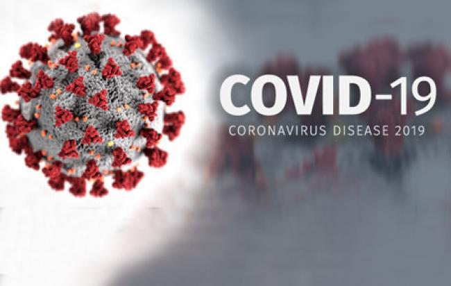 Update Corona Riau: Jumlah Pasien Sembuh Bertambah 119 Orang, Lebih Banyak dari Kasus Baru