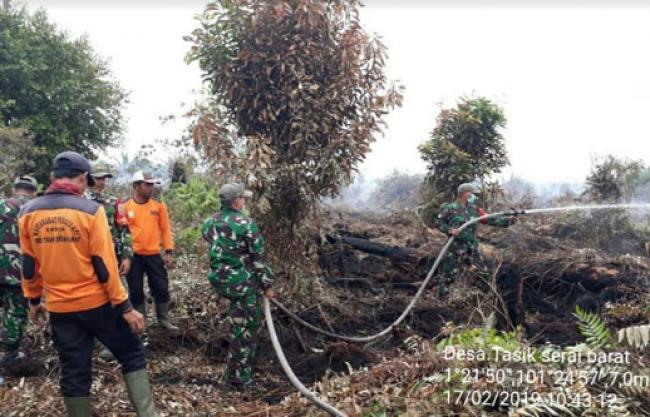 Hutan Gambut Tasik Serai Terbakar, Koramil Mandau Bersama Tim Gabungan Lakukan Pemadaman