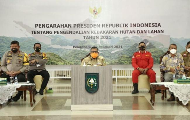 Presiden Jokowi Apresiasi Penetapan Status Siaga Darurat Karhutla Riau