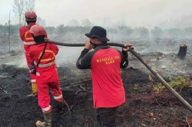 Petugas Gabungan Padamkan Karhutla di Lima Daerah di Riau