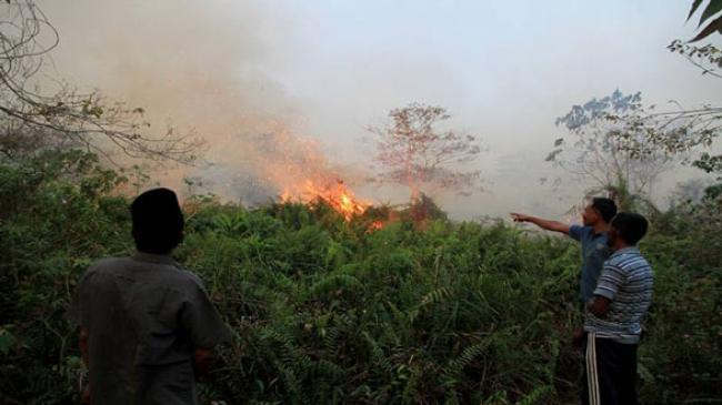 79 Titik Panas Bermunculan di Riau