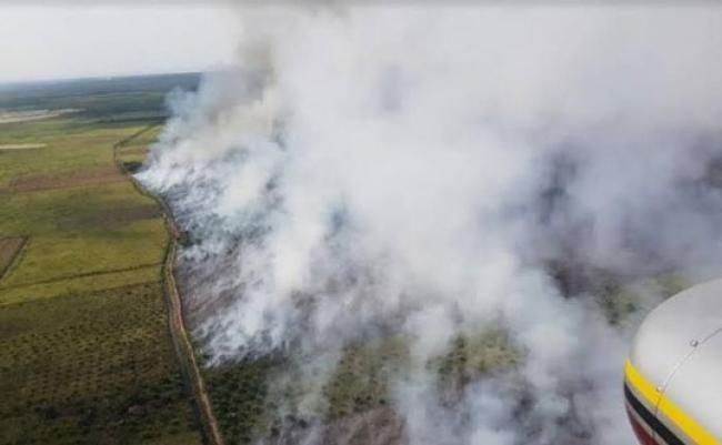 BMKG Deteksi 80 Hotspot di Sumatera, 36 Diantaranya di Riau