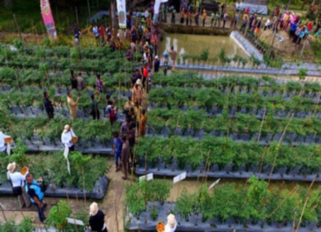 Tingkatkan Skill Bertani Cabe, 32 Petani Siak Studi ke Lembang