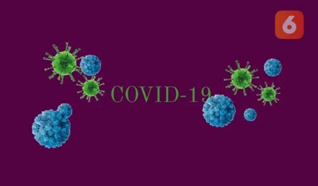 Hari Ini 19 Provinsi Laporkan Angka Sembuh Lebih Tinggi dari Kasus Baru COVID-19