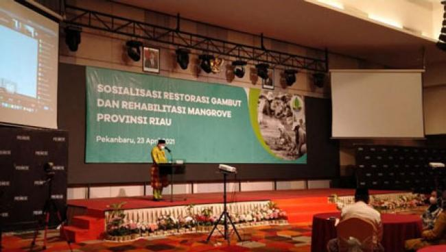 Gubri Harap BRGM Atasi Problem Gambut dan Mangrove