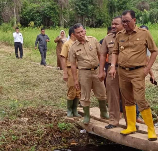Gelontorkan Dana 7 Miliar, Rohil Bangun Hutan Kota di Pusat Ibukota