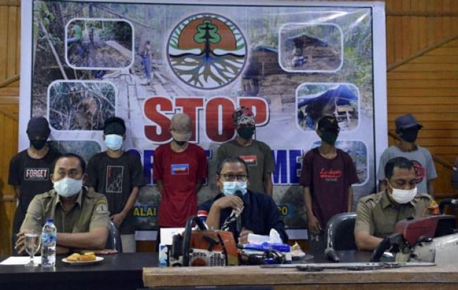 BBKSDA Riau Bongkar Kasus Ilegal Loging di Cagar Alam Kampar