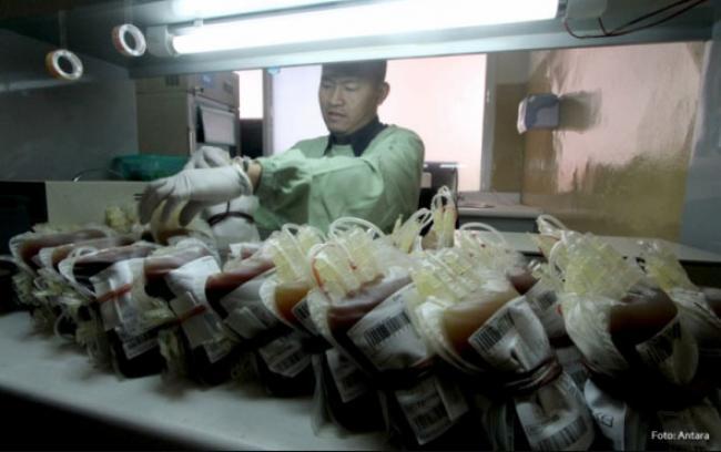 Kantong Darah Antibakteri Karya Mahasiswa Unair Dibuat dari Mangrove