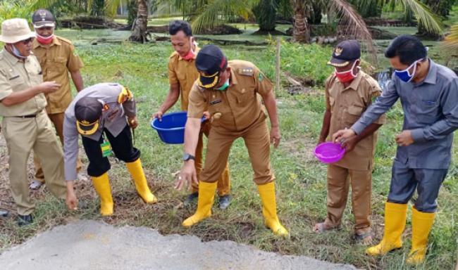 Bupati Suyatno Tabur Benih Padi dan Jagung di Pekaitan