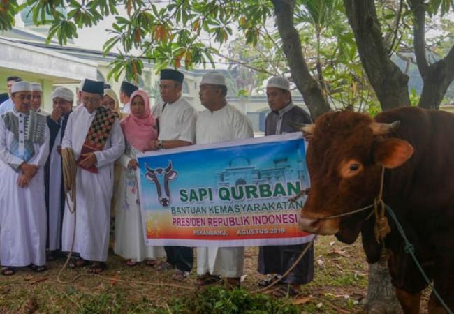 Masjid Raya Annur Riau Tahun Ini Sembelih 20 Hewan Kurban