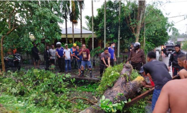 Pohon Tumbang dan Fasilitas Rusak Akibat Angin Kecang dan Hujan Badai Guyur Meranti, Riau