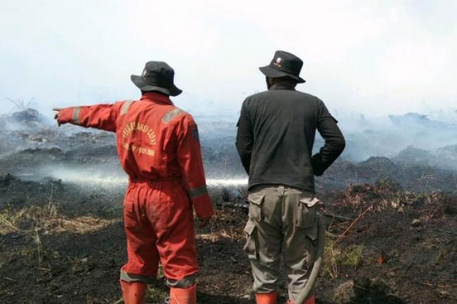 Kebakaran di Rohil Meluas, Tim Satgas Karhutla Terus Berjibaku