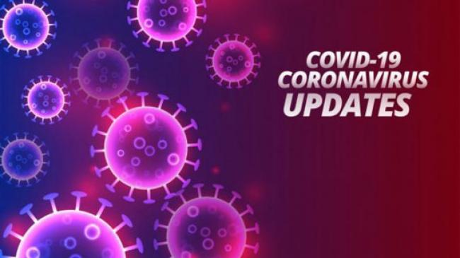Update COVID-19 Riau per 4 Juli, Positif 463 Kasus, Pasien Sembuh 246 Orang