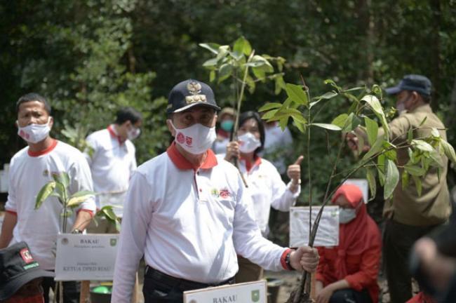 2.020 Batang Bibit Mangrove Ditanam di Dumai