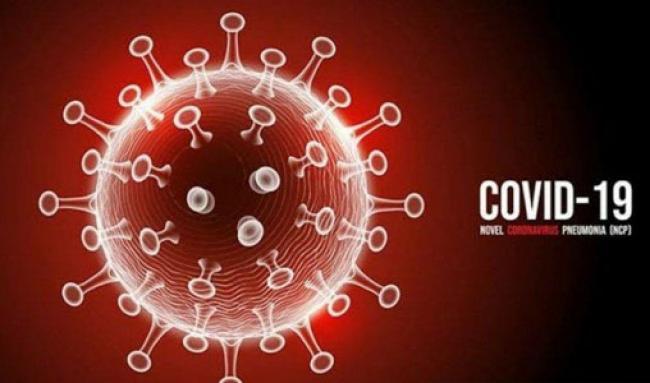 Update Covid-19 Riau, Tambah 50 Kasus Konfirmasi dan 4 Pasien Sembuh