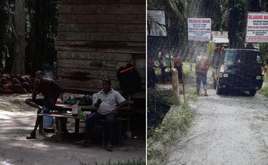 Setelah 24 Tahun, Kelompok Tani di Tapung Hilir Diusir Dari Kebunnya