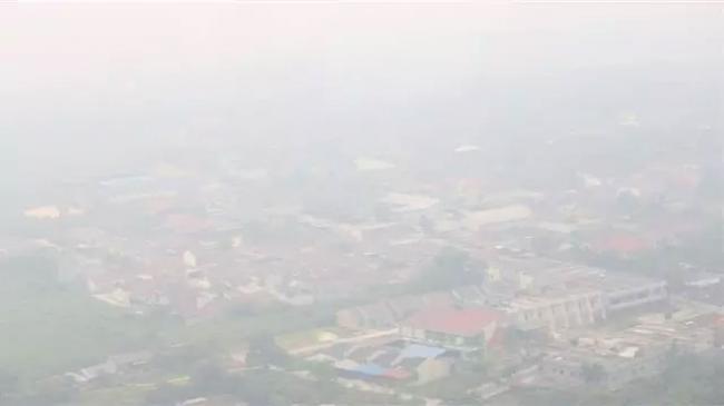 Kabut Asap, 16 Ribu Warga Riau Positif Terpapar ISPA