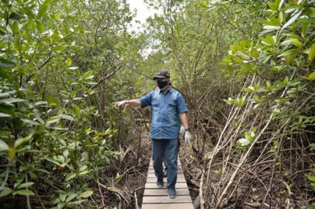 Ekowisata Mangrove Bengkalis Diresmikan, Pj Bupati: Terimakasih, Warga Desa Pangkalan Jambu