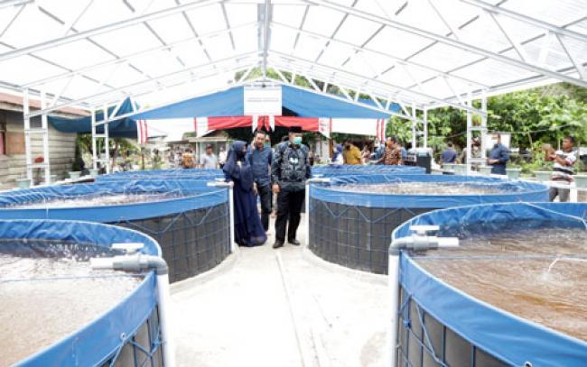 Tinjau Pembangunan Kolam Bioflok di Kampung Libo Jaya, Ini Harapan Alfedri