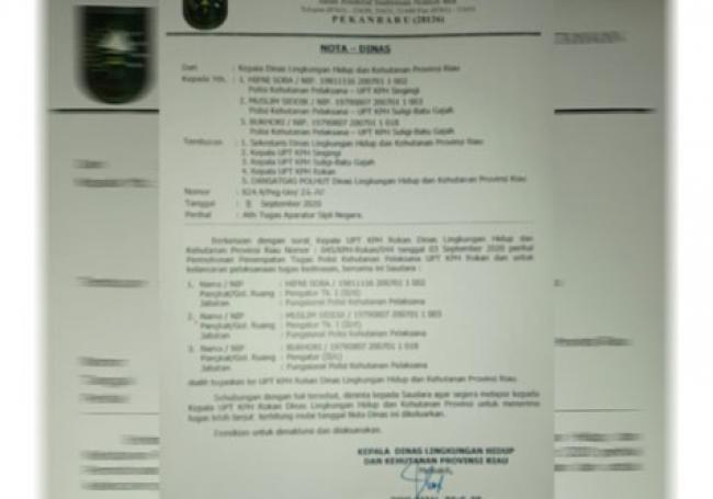 Heboh, DLHK `Obok-obok` Penempatan Tugas Polhut Riau, Ada Apa?