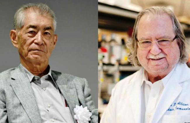 Peraih Nobel Kedokteran 2018 Diberikan ke Peneliti Imunoterapi Kanker