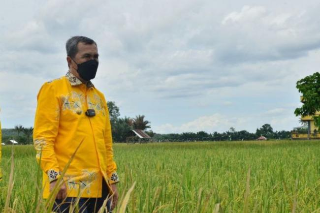 Gubri Ajak Petani Kuansing Tingkatkan Produksi Pangan, Ini Bantuan Yang Diberikan