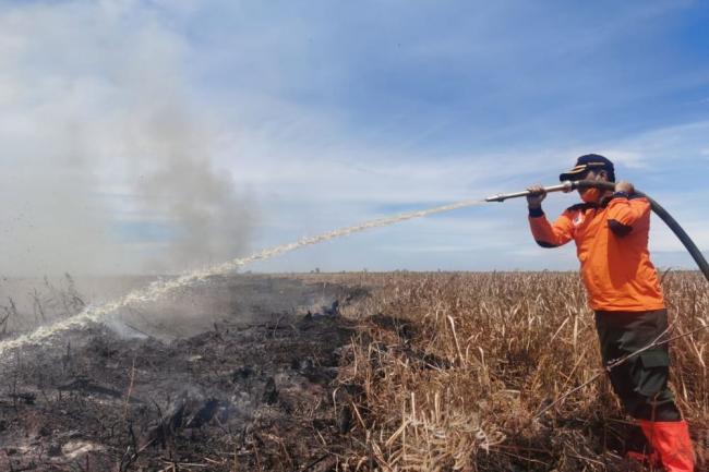Hari Ini Riau Nihil Titik Api, BPBD Lakukan Pendinginan Kebakaran di Kampar