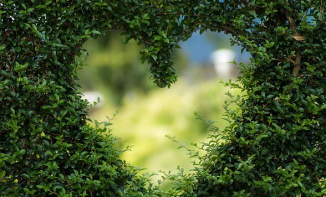3 Kisah Romantis Nabi Muhammad SAW Bersama Istri yang Bisa Ditiru Pasangan