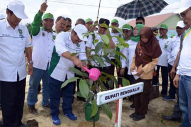 Bupati Amril: Jadikan Gerakan Menanam Pohon Sebagai Budaya
